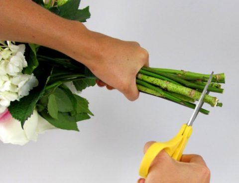 Cách giữ hoa tươi lâu khi cắm nhất có thể